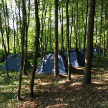 Šatori u šumi